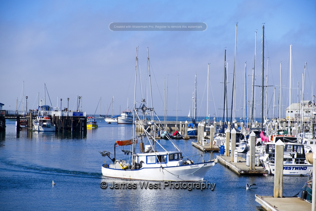 Harbor 8x12